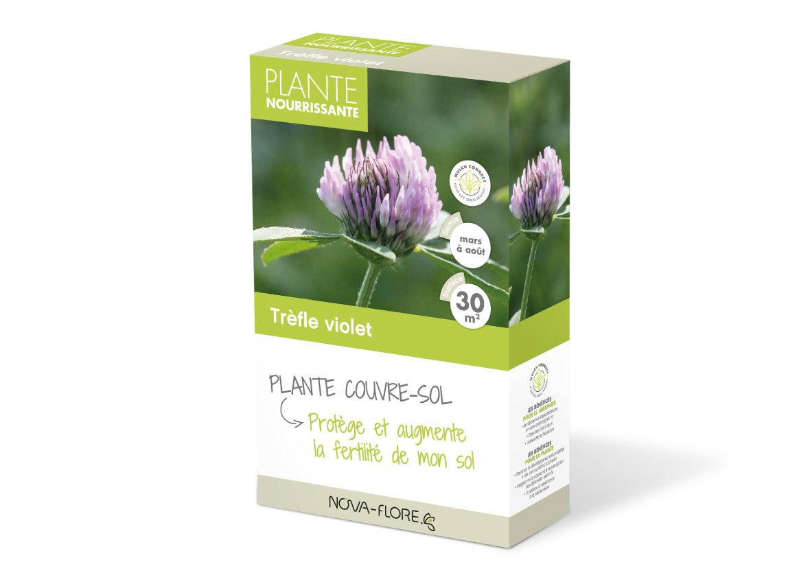 engrais vert tr fle violet pour le potager nova flore jardin. Black Bedroom Furniture Sets. Home Design Ideas